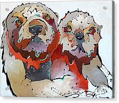 Swaddle Acrylic Print