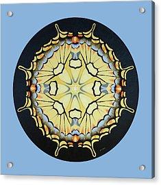 Swallowtail Mandala Acrylic Print