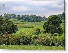 Acrylic Print featuring the photograph Taliesin Landscape by PJ Boylan