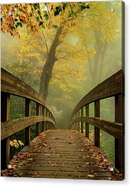 Tanawha Trail Blue Ridge Parkway - Foggy Autumn Acrylic Print