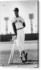 Ted Williams Acrylic Print by Slim Aarons