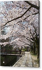 Tetsugakunomichi, Kyoto Prefecture Acrylic Print by Daj