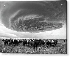 Texas Panhandle Meso Acrylic Print