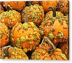 Textured Pumpkins  Acrylic Print