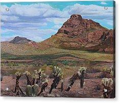 The Cholla At Mount Mcdowell, Arizona Acrylic Print