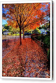 The Color Of Things Acrylic Print