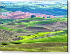 The Color Palette Of The Palouse Acrylic Print