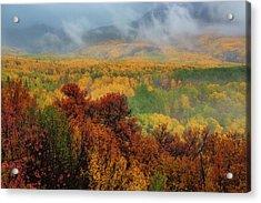 The Feeling Of Fall Acrylic Print