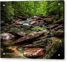 The Forest Primeval Acrylic Print