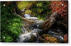 Acrylic Print featuring the photograph The Giving Stream by TL Mair