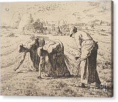 The Gleaners  Etching By Millet Acrylic Print