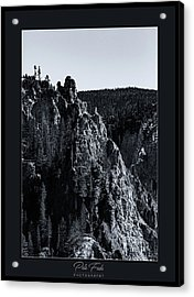 Acrylic Print featuring the photograph The Grand Canyon Of The Yellowstone by Pete Federico