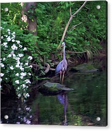 The Great Blue Heron - Impressionism Acrylic Print