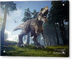 The Hunting Grounds Of A Tyrannosaurus Acrylic Print