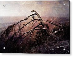 Acrylic Print featuring the photograph The Invisible Force by Randi Grace Nilsberg