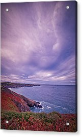 The Lizard Point Acrylic Print