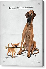 Acrylic Print featuring the digital art The Long And The Short And The Tall by Rob Snow