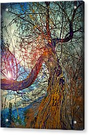 The Offering Acrylic Print