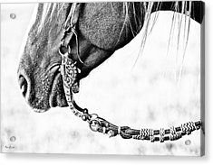 The Other End Acrylic Print