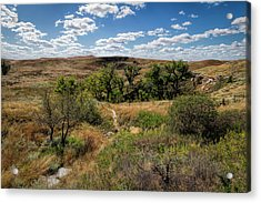 Acrylic Print featuring the photograph The Path To St. Jacob's Well by Scott Bean