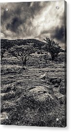 The Path Up Slemish Acrylic Print