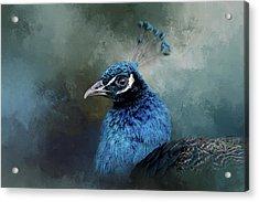 The Peacock's Crown Acrylic Print