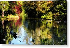 Acrylic Print featuring the photograph The Pond At Inglewood House by Jeremy Lavender Photography