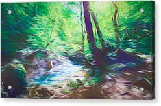 The Stream In The Forest Acrylic Print