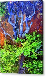 Acrylic Print featuring the photograph The Tree Of Life by Ben Upham III