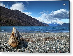 The Trunk, The Lake And The Mountainous Landscape Acrylic Print