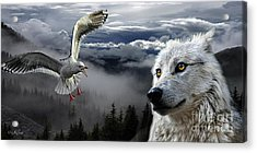 The Wolf And The Gull Acrylic Print