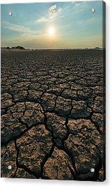 Thirsty Ground Acrylic Print