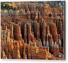 Those Hoodoos.  Bryce Canyon Acrylic Print