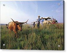 Three Cowboys Standing By Texas Acrylic Print by Sylvain Grandadam