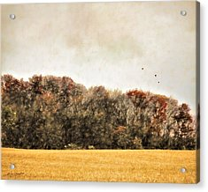 Three Crows And Golden Field Acrylic Print
