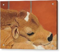 Three Hours Old Acrylic Print