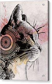 Tides Of Tomorrow - Mandala Tabby Cat Drawing, Animal Portrait Acrylic Print
