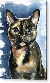 Tiffany Tortoiseshell Cat Painting Acrylic Print