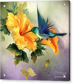 Tiny Wings Acrylic Print
