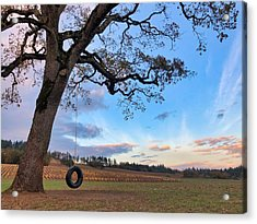 Tire Swing Tree Acrylic Print