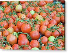 Tomatoes On The Vine Acrylic Print by By Ken Ilio