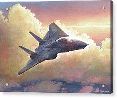 Tomcat Acrylic Print