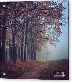 Toned Picture Of Sad And Mystery Autumn Acrylic Print
