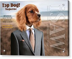 Acrylic Print featuring the digital art Top Dog Magazine by ISAW Company