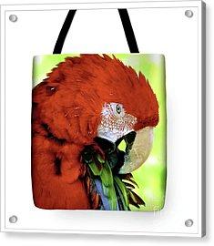 Tote Bags Acrylic Print
