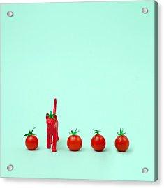 Toy Cat Painted Like A Tomato In Row Acrylic Print by Juj Winn