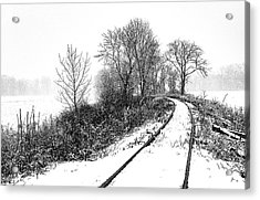 Tracks In Snow Acrylic Print