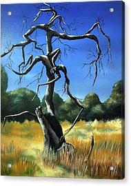 Tree 3 Acrylic Print