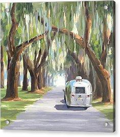 Tree Tunnel Acrylic Print