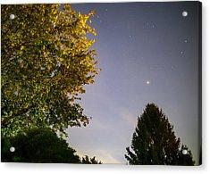 Trees And Stars Acrylic Print